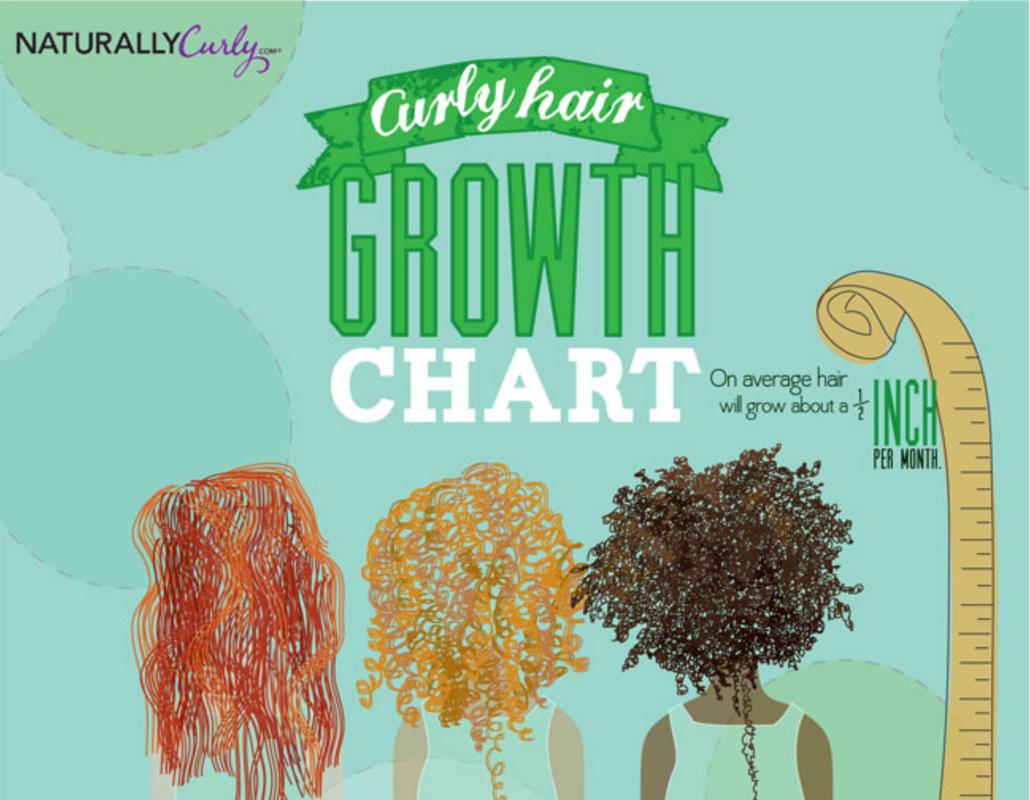 Curly Hair Growth Chart - Hair by Brian